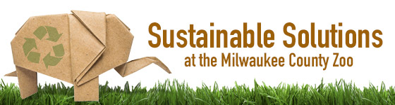 Sustainable Solutions At The Milwaukee County Zoo!