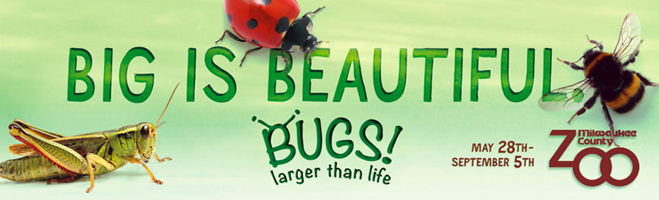 Big is Beautiful - BUGS! Larger than Life, sponsored by Sendik's Food Markets - Click to return home