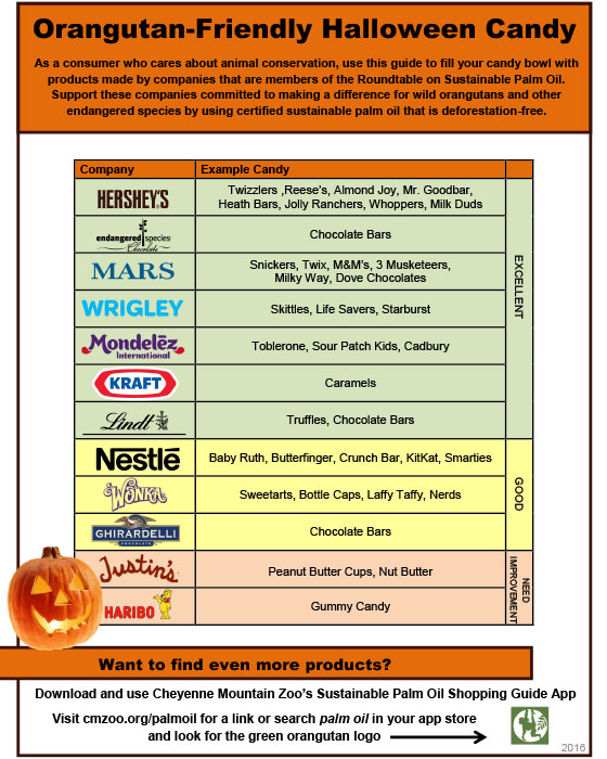 Halloween Sustainable Palm Oil Guide